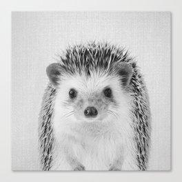 Hedgehog - Black & White Canvas Print