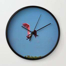 Roseate Spoonbill in Flight VI Wall Clock