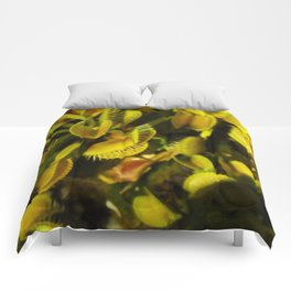 Floral Print 035 Comforters