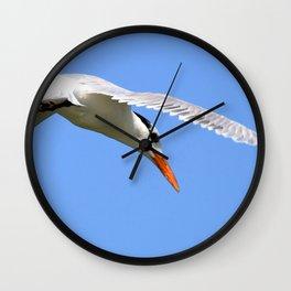 Watercolor Bird, Royal Tern 11, Janes Island, Maryland Wall Clock