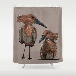 Hamerkop Bird Shower Curtain