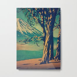 Late Hues at Hinsei Metal Print