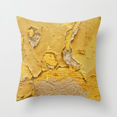 027 Throw Pillow