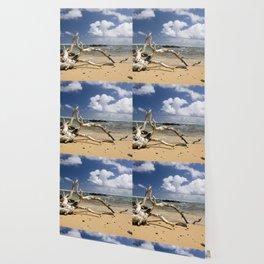 Driftwood on Beach Wallpaper