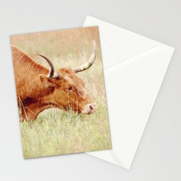 Long Horn Stationery Cards