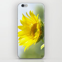 Ladybug and it's Sunflower iPhone Skin