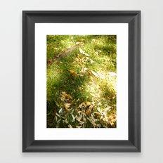 Grass & Sun  Framed Art Print