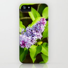Lilac Flower iPhone Case