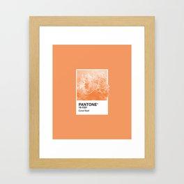 Pantone Series – Coral Reef Framed Art Print