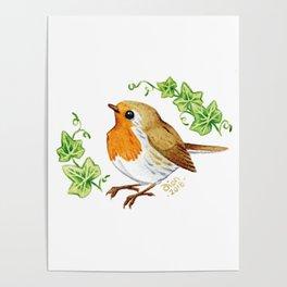 Robin & Ivy Poster