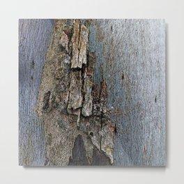 Eucalyptus Tree Bark and Wood Texture 16 Metal Print