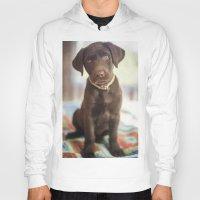 labrador Hoodies featuring Labrador Love by rusticedenphotography