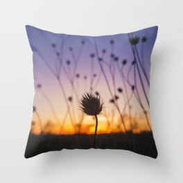 dry scabious Throw Pillow