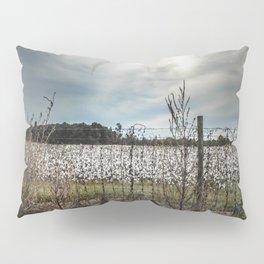 Florida Cotton Fields  Pillow Sham