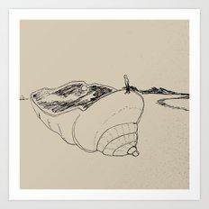 land of seashell Art Print