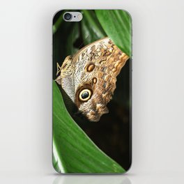 Eye on You iPhone Skin