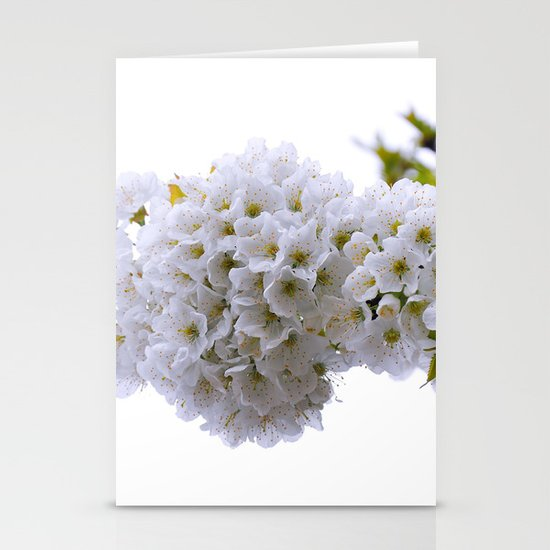 spring mode on Stationery Cards