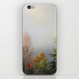 Storm Warning iPhone Skin