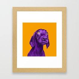 The Dogs: Guy 4 Framed Art Print