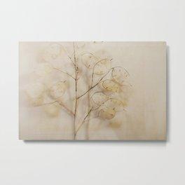 Lunaria Metal Print
