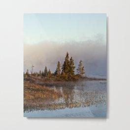 trees at south bay Metal Print
