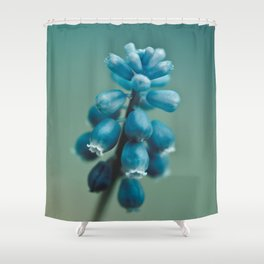 Blue Flower, Grape Hyacinth Shower Curtain
