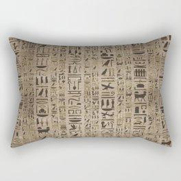 Egyptian hieroglyphs on wooden texture Rectangular Pillow
