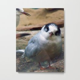 And You? Metal Print