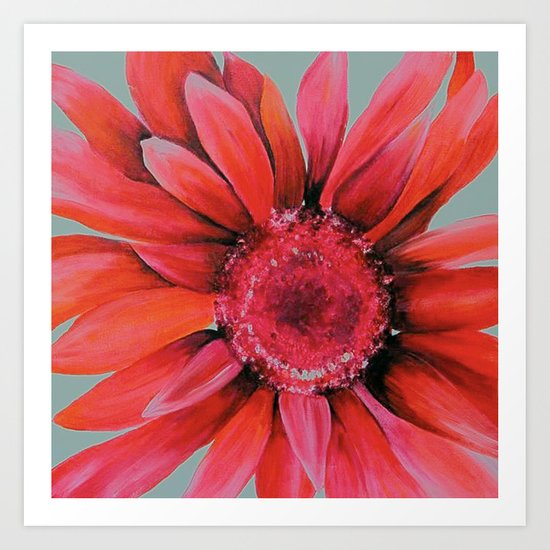 Pink Daisy Flower Art Print