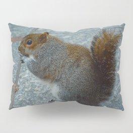 Chonk Pillow Sham
