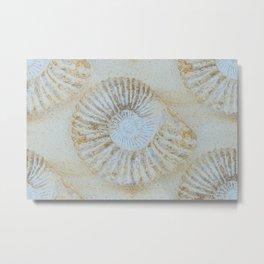 Ammonites Metal Print