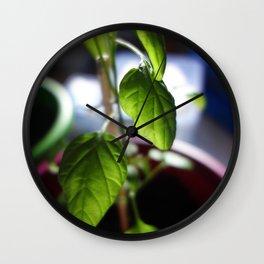 Sunlit Serrano Wall Clock