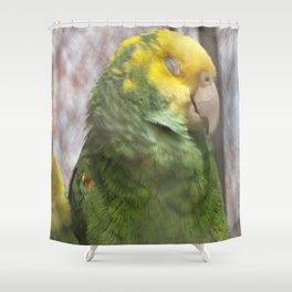 Sleepy Bird Shower Curtain