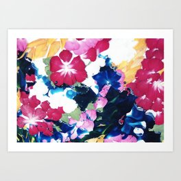Colour memories Art Print
