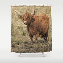 Scottish Highland ginger cow with it's tongue out Shower Curtain