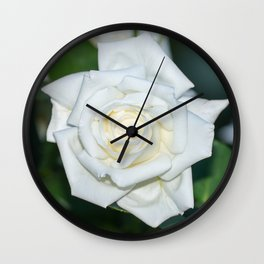 Canadian White Star Rose Wall Clock