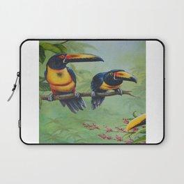 Collared Aracari Laptop Sleeve