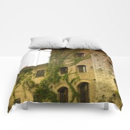 stone building  Comforters