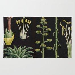 Botanical Pineapple Rug