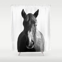 horse Shower Curtains featuring Horse by Amy Hamilton