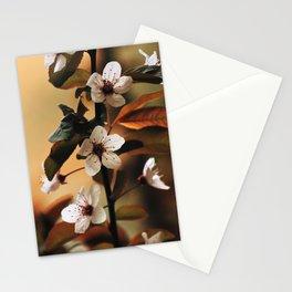 Cherry Blossom 3 Stationery Cards