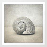 seashell Art Prints featuring Seashell by Taylan Soyturk