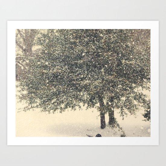 Live Oak in the Snow Art Print