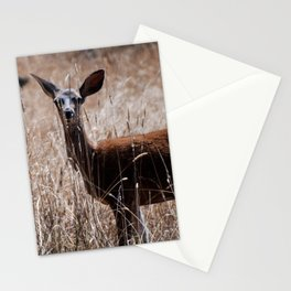 A Deer in Summer Stationery Cards