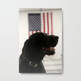 All-American Black Labrador Metal Print