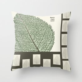 Space and Light and Order Quote #1 Throw Pillow