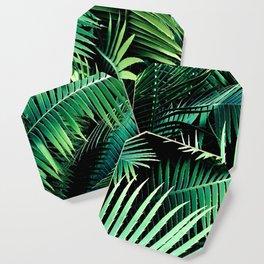 Winter Palms Coaster