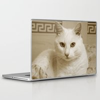 kitty Laptop & iPad Skins featuring Kitty by Armine Nersisian