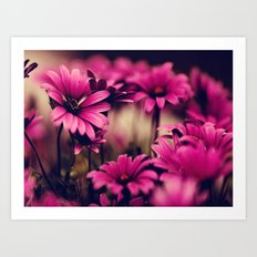 Flower, Flower Patterns Art Print