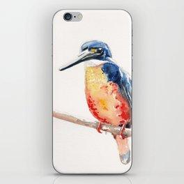 Kingfisher Bird  iPhone Skin